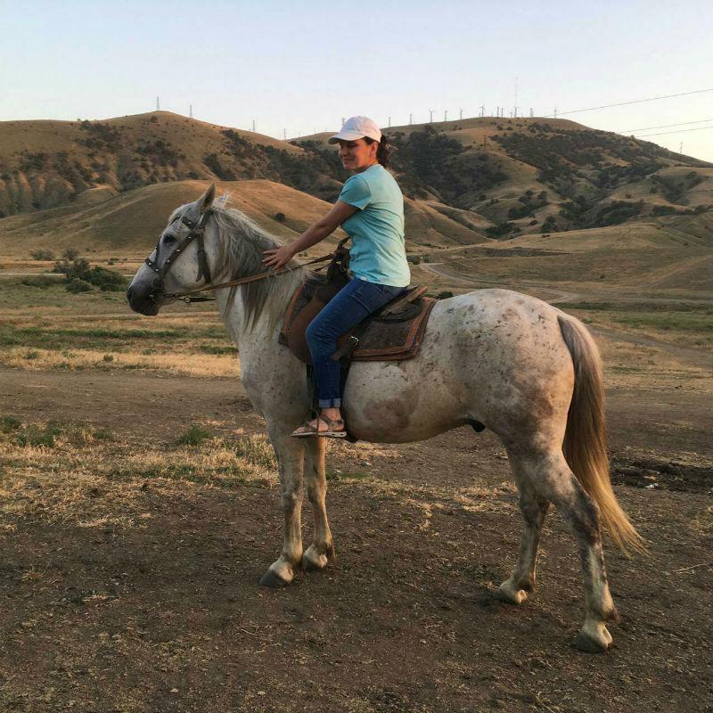 Развлечения мыс Меганом в Судаке – конные прогулки